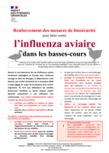 Flyer Influenza